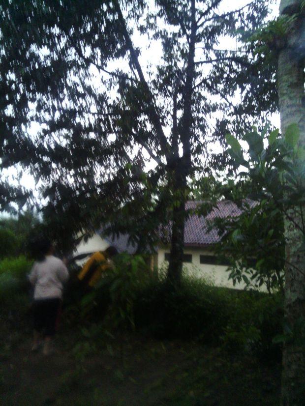 Memetik buah durian buat oleh oleh