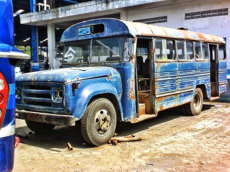 Hasil gambar untuk bus dodge indonesia